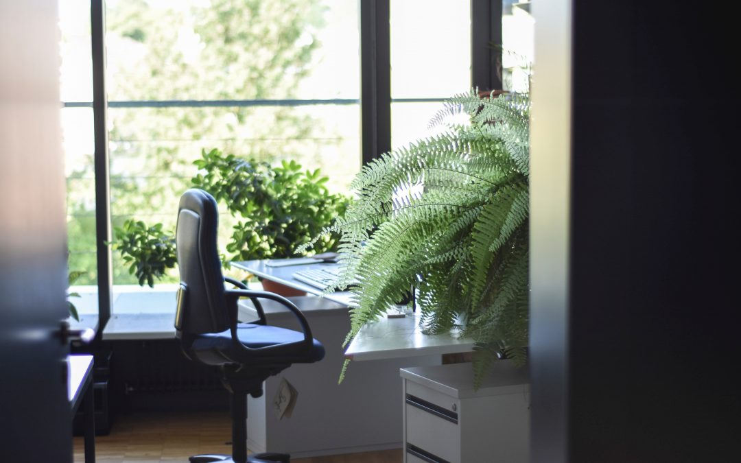 Stop Office Sickness: 5 Infection Control Cleaning Methods